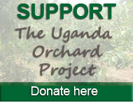 Donate to the Uganda Orchard Project