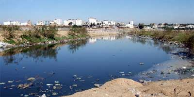 Untreated waste water in Wadi Gaza, near Gaza City, pollutes rivers and eventually the sea, as well as groundwater. © ICRC