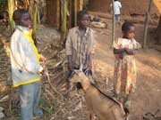 Children-with-goat